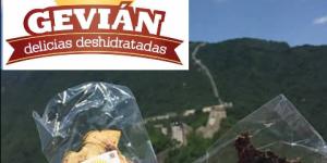 Gevian